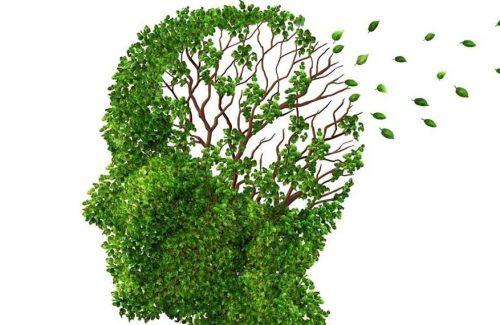 GIORNATA DELL'ALZHEIMER: INIZIATIVE NELLE RSA DI STIA E AREZZO